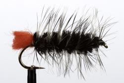 Black Wooly Worm (20132)