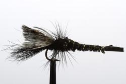 Black Yabbie (20262)