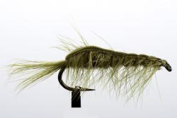 Olive Shrimp (20285)